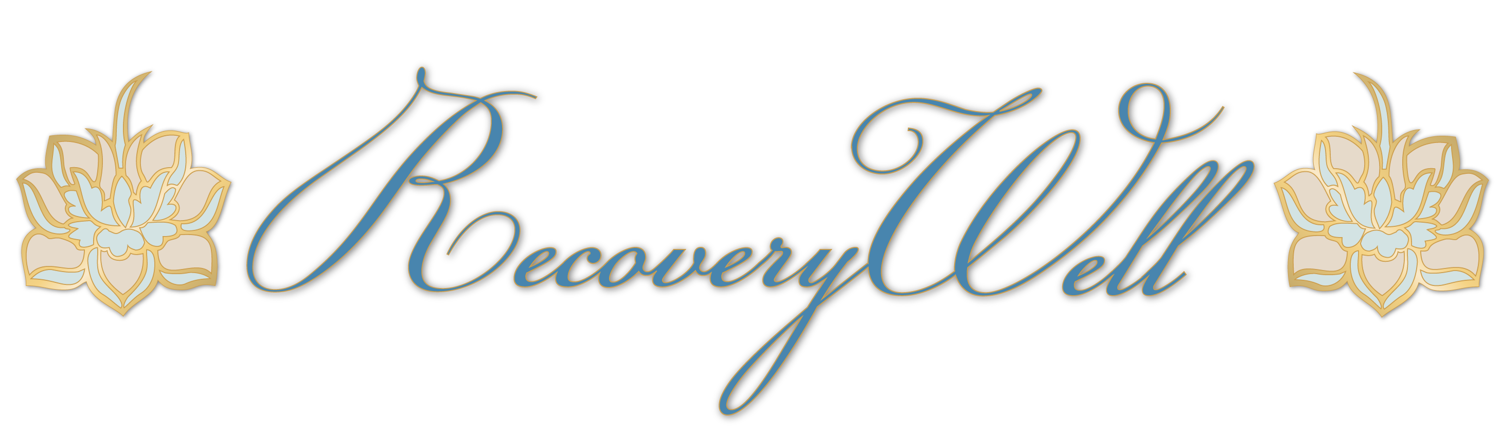 Recovery Well